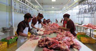 شرکت بسته بندی گوشت