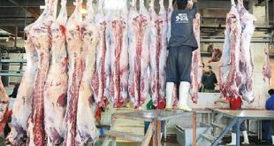 گوشت کشتارگاه تهران
