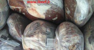 توزیع گوشت دولتی