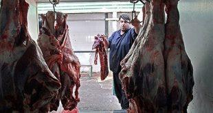 محل توزیع گوشت دولتی