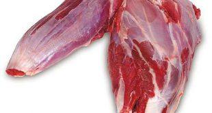 نمایندگی فروش گوشت گوساله سردست