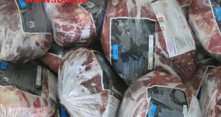خرید گوشت برزیلی