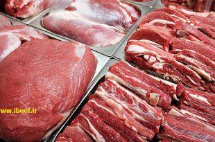فروش عمده گوشت