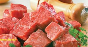 قیمت گوشت ماده