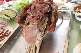 گوشت کله گاو