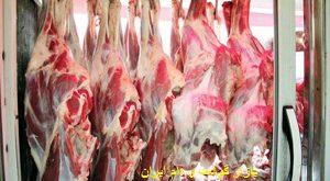 قیمت گوشت گوسفندی در کشتارگاه