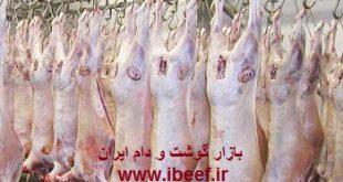 واردات گوشت گوسفندی از استرالیا و گرجستان