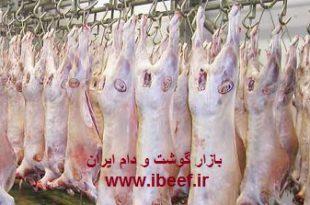 واردات گوشت گوسفندی از استرالیا