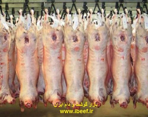گوشت گوسفندی از استرالیا